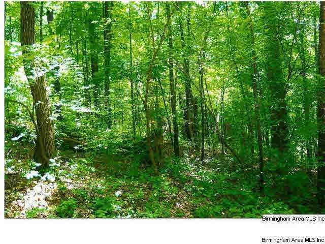 16 Acres Hwy 78 - Photo 1