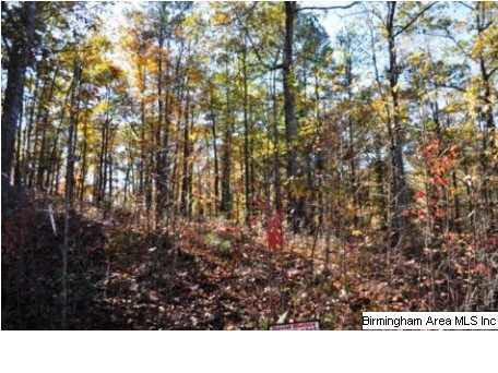 Lot 3 Overlook Dr Lot 3, Lineville, AL 36266 (MLS #572254) :: Josh Vernon Group