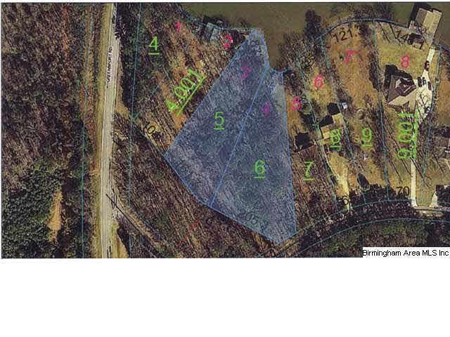 Muscadine Dr 3 & 4, Ashville, AL 35953 (MLS #585344) :: Brik Realty