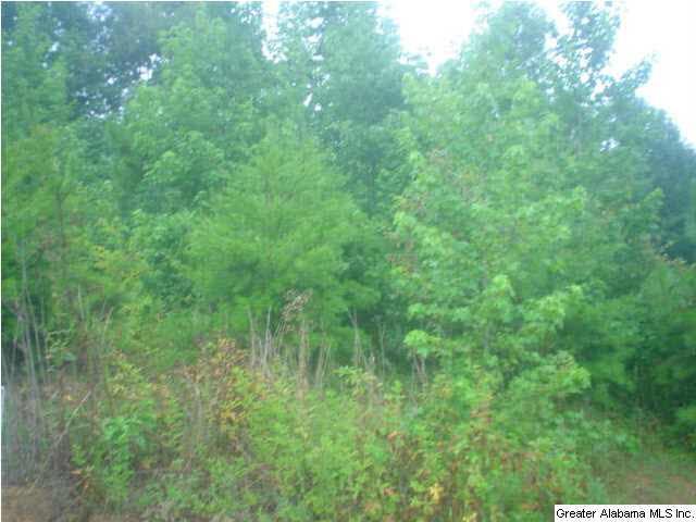 Lot # 20 Maple Valley Cir Lot 20, Blountsville, AL 35031 (MLS #604126) :: LIST Birmingham