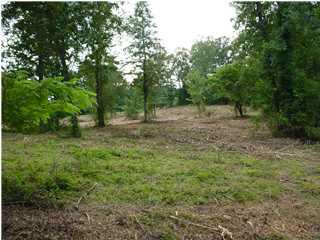 879 Lual Dr Lot 12, Fultondale, AL 35217 (MLS #604822) :: Bentley Drozdowicz Group