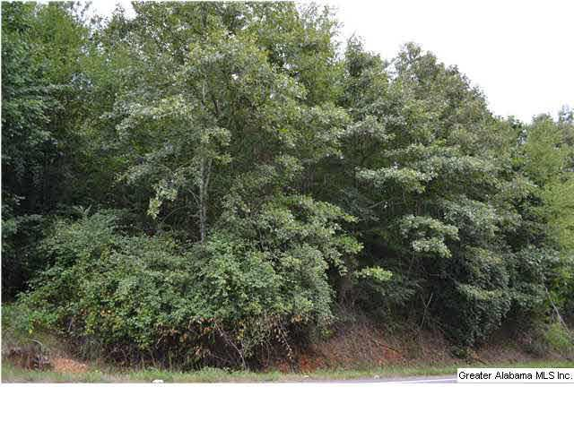 Hwy 132 20 ACRES, Altoona, AL 35952 (MLS #607207) :: LIST Birmingham