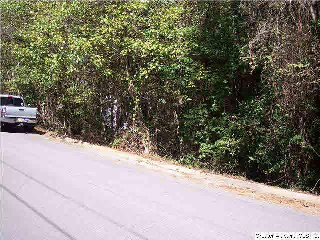Tallassee Trl Lot 1, Jacksonville, AL 36265 (MLS #612467) :: Gusty Gulas Group