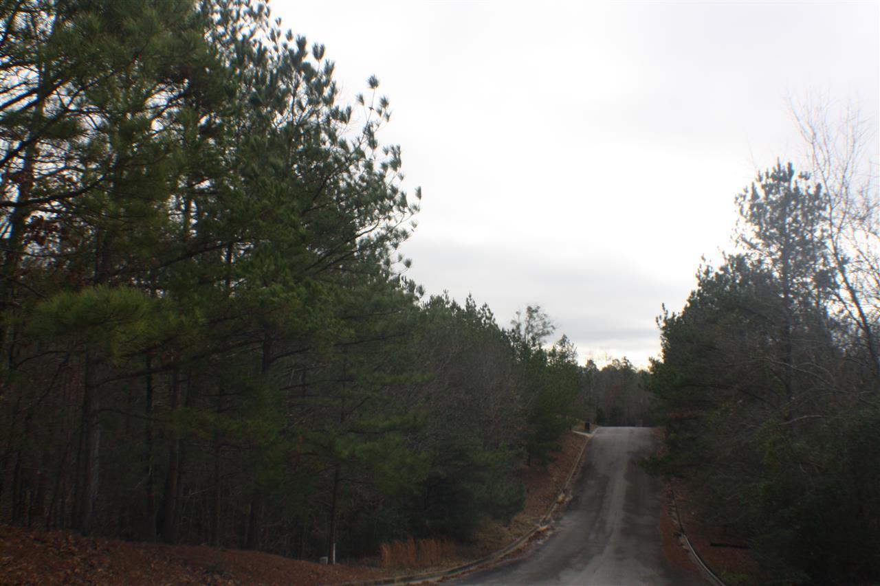 0 Winfrey Lane - Photo 1