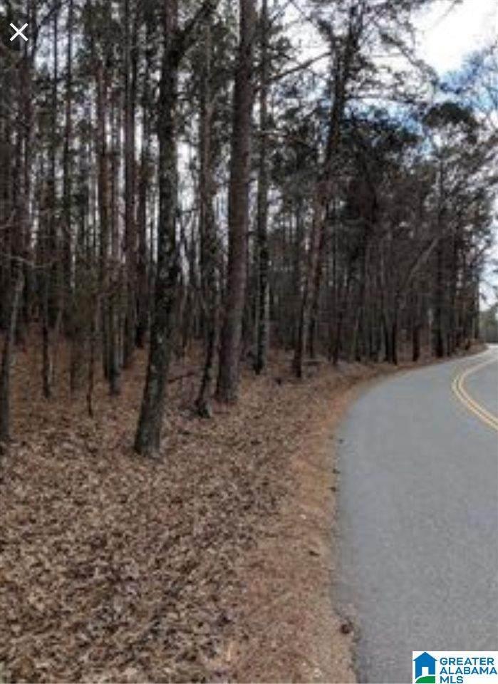 2150 Rock Mountain Drive - Photo 1