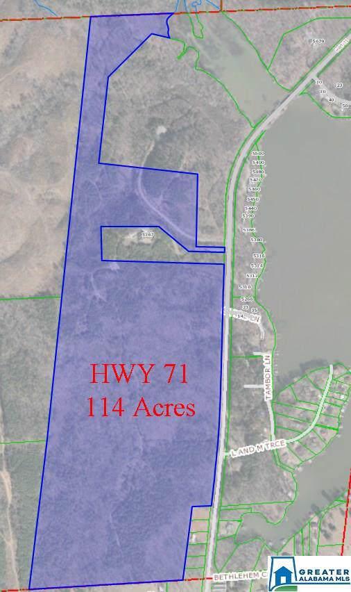 Hwy 71 114+/- Acres, Shelby, AL 35143 (MLS #770064) :: JWRE Powered by JPAR Coast & County