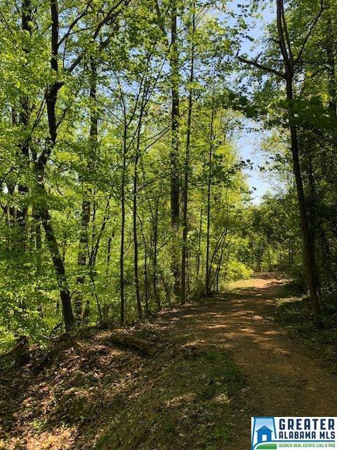 1774 Twin Bridge Dr #14, Vestavia Hills, AL 35243 (MLS #813222) :: Josh Vernon Group