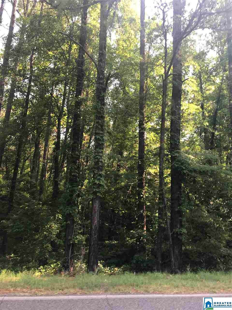 8335 Alliance Short Creek Rd - Photo 1