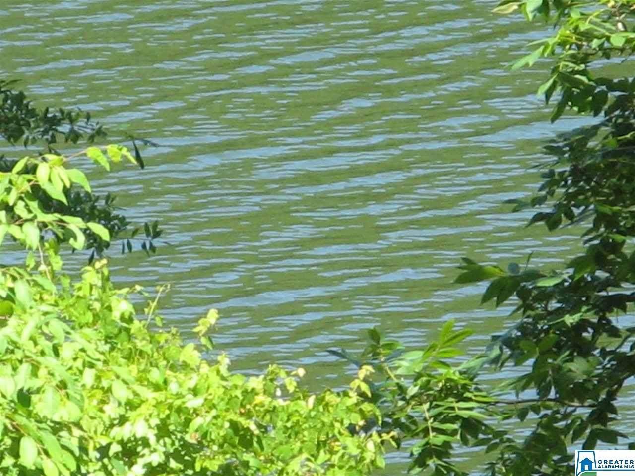 Paint Creek Overlook - Photo 1