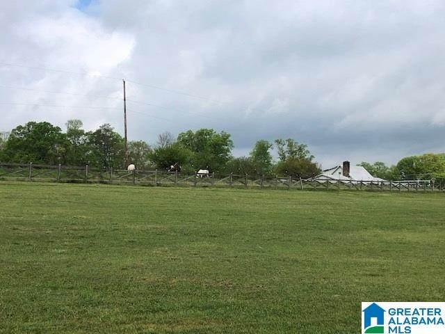 104 Rolling Circle #11, Vincent, AL 35178 (MLS #876591) :: EXIT Magic City Realty