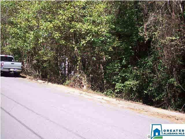 Tallassee Trl Lot 1, Jacksonville, AL 36265 (MLS #612467) :: Josh Vernon Group
