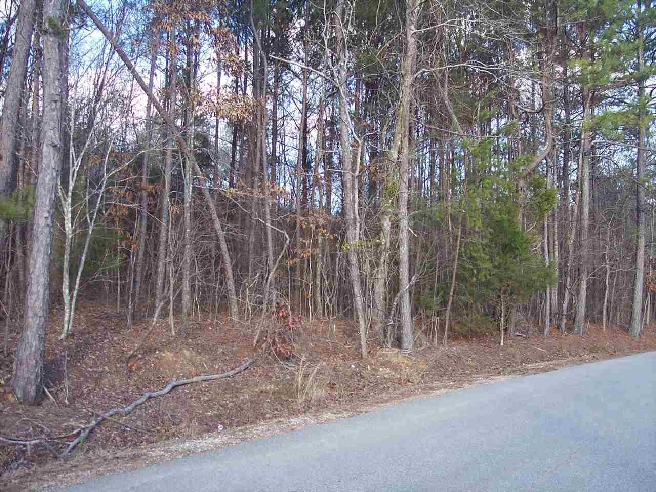 004 Dripping Rock Rd - Photo 1