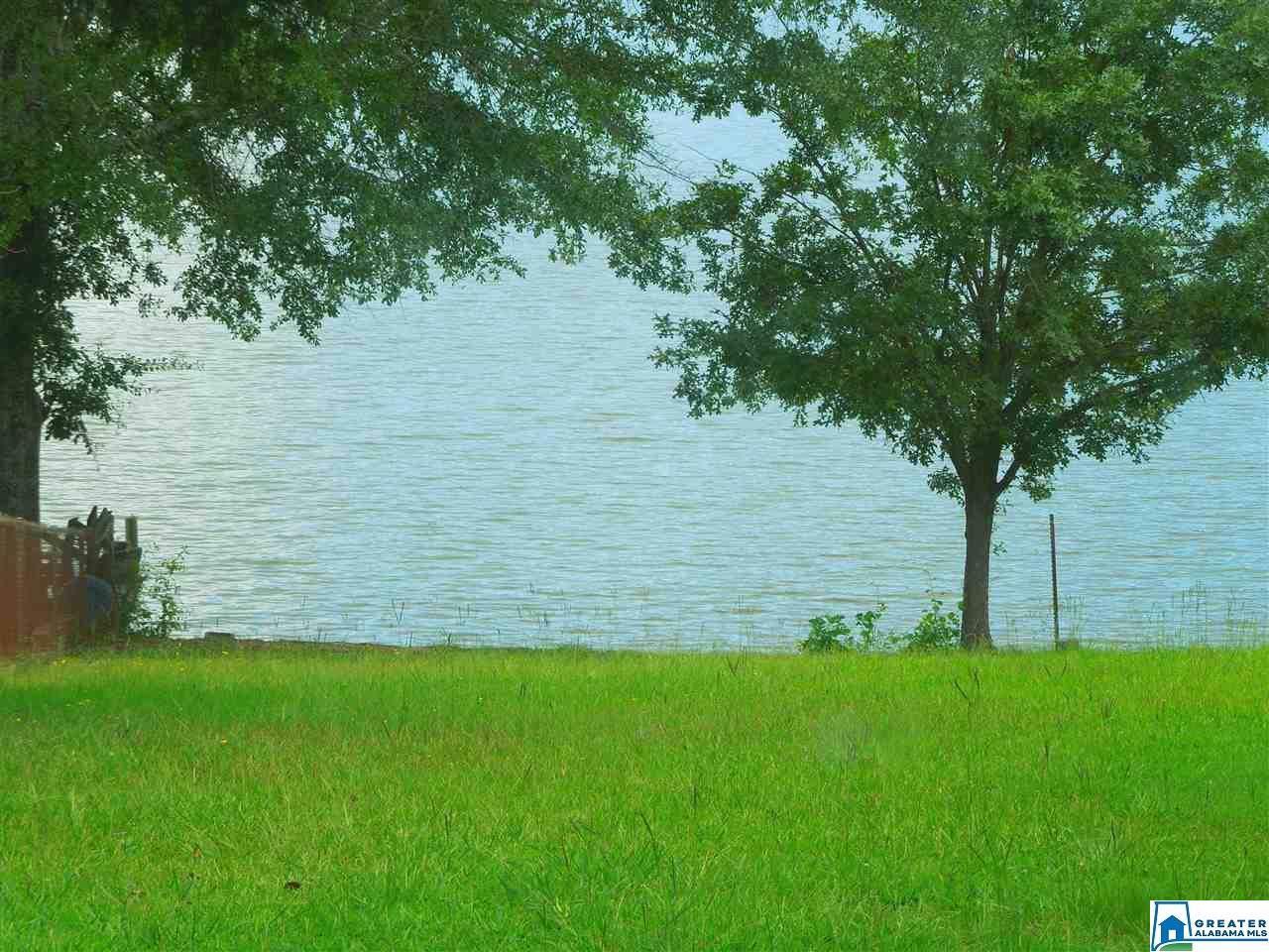 Lake Hill Dr - Photo 1