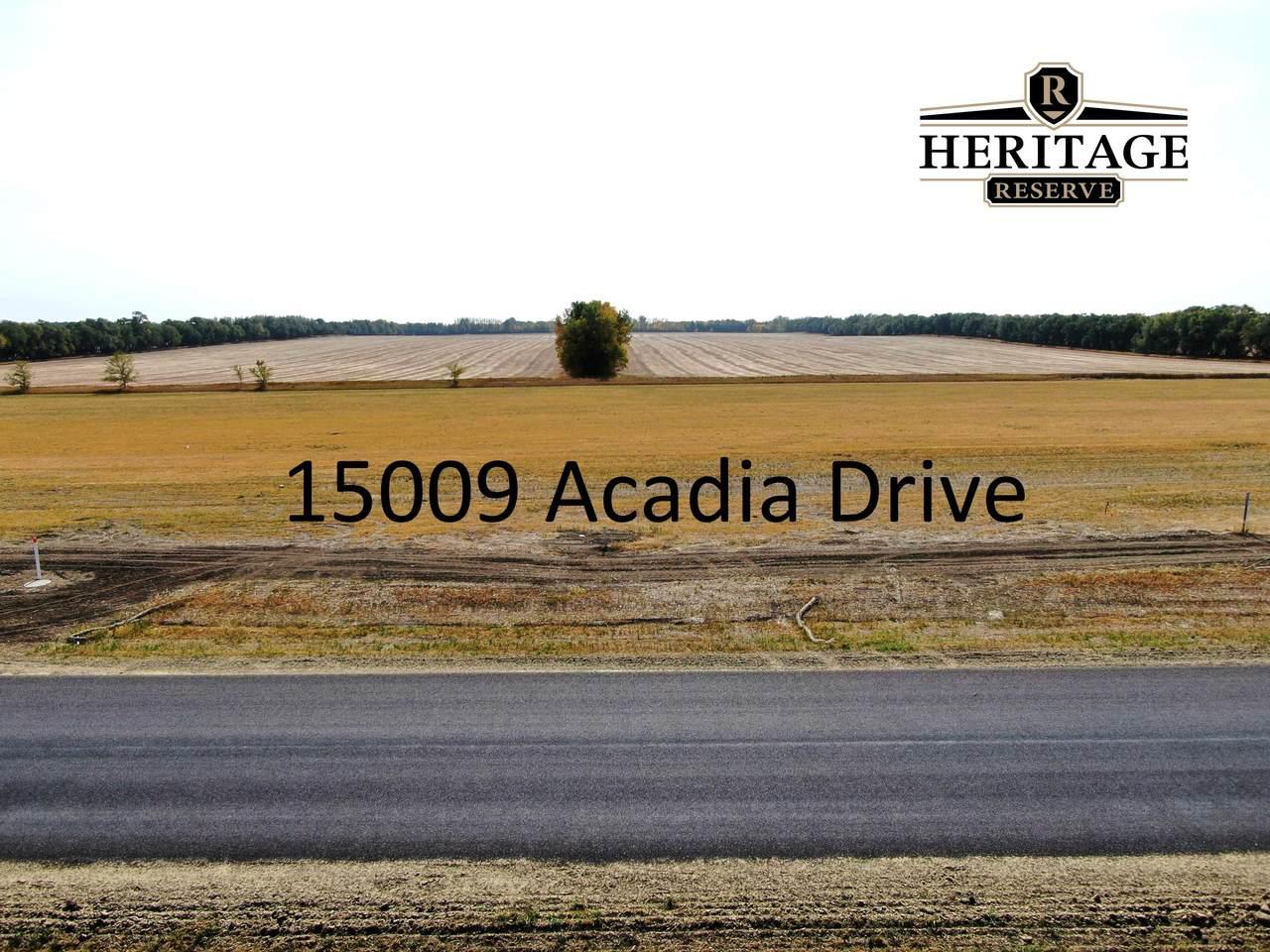 15009 Acadia Drive - Photo 1
