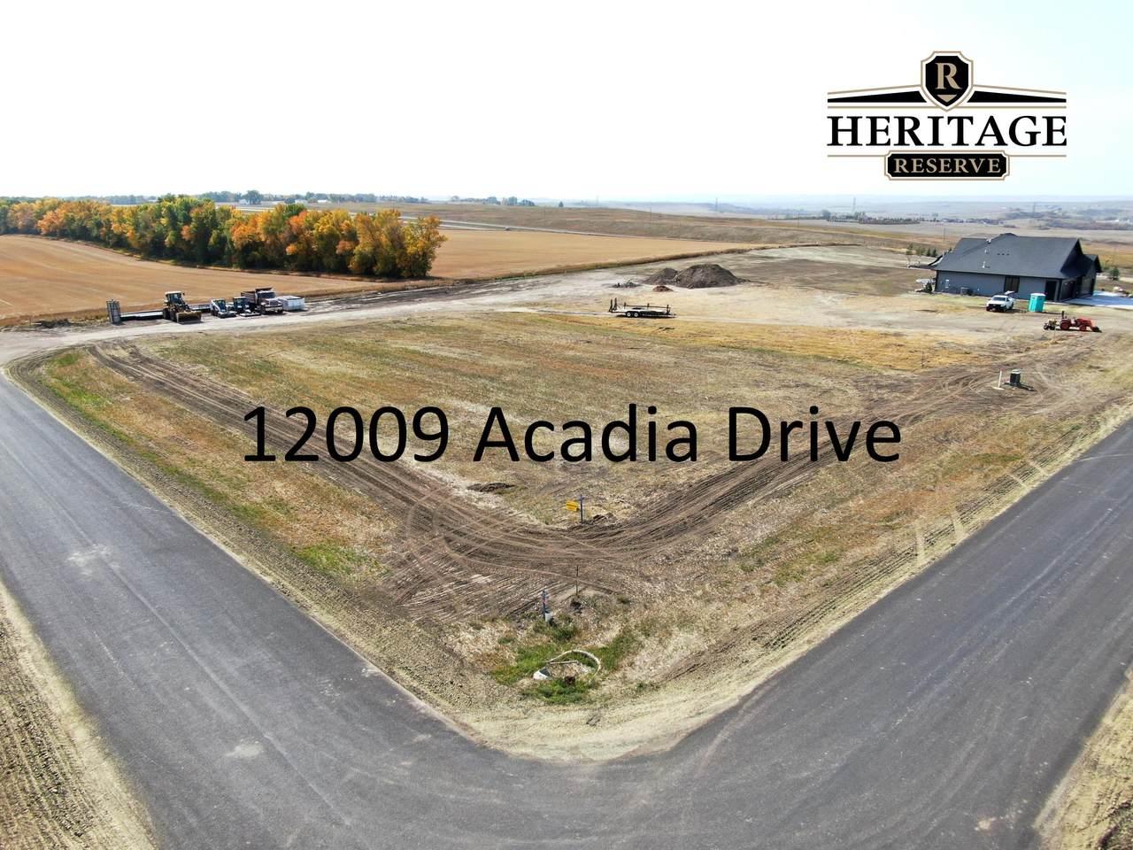 12009 Acadia Drive - Photo 1