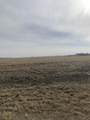 07 Cow Poke Trail - Photo 7
