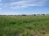 06 Spaniel Road - Photo 4