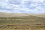 Rural Land - Photo 2
