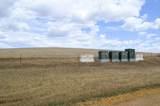 Rural Land - Photo 6