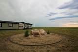 2296 Pony Express Drive - Photo 38