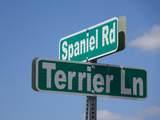 6 Spaniel Road - Photo 6