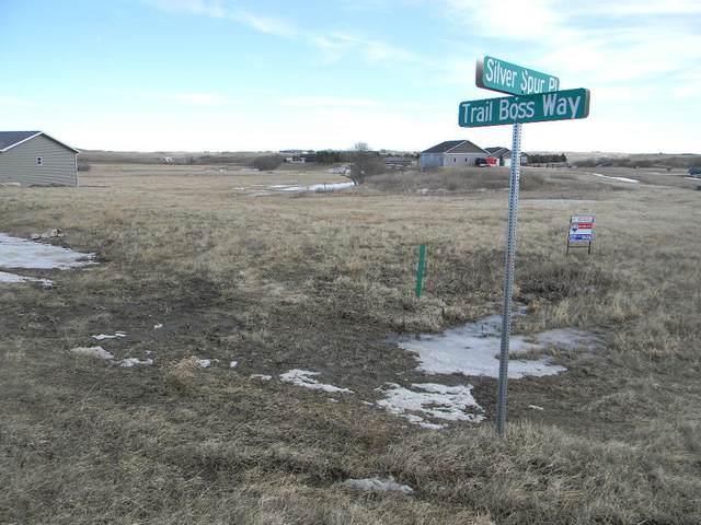 13819 Trail Boss Way, Bismarck, ND 58503 (MLS #405877) :: Trademark Realty