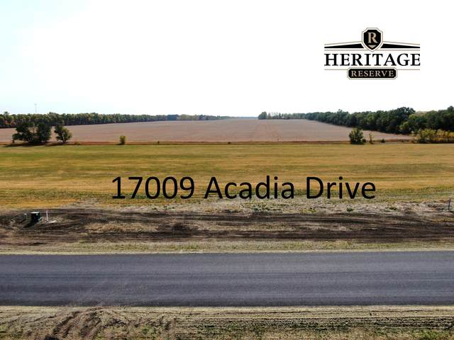 17009 Acadia Drive, Bismarck, ND 58503 (MLS #408630) :: Trademark Realty