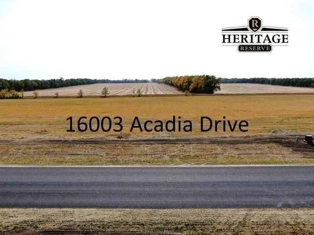 16003 Acadia Drive, Bismarck, ND 58503 (MLS #408635) :: Trademark Realty