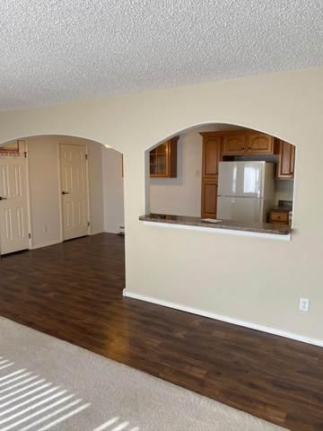 120 Lake Avenue #10, Bismarck, ND 58504 (MLS #409882) :: Trademark Realty