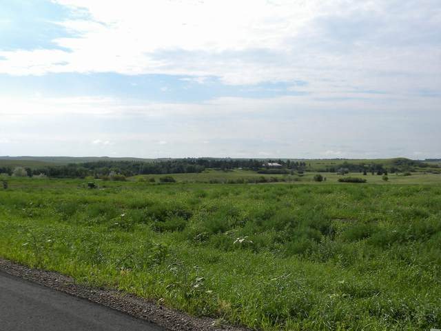 1159 Parker Ranch Road, Bismarck, ND 58503 (MLS #410085) :: Trademark Realty