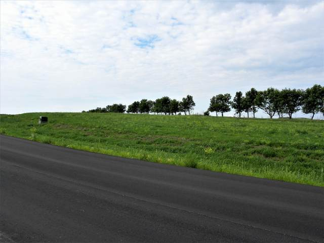 14586 Parker Ranch Road, Bismarck, ND 58503 (MLS #410210) :: Trademark Realty