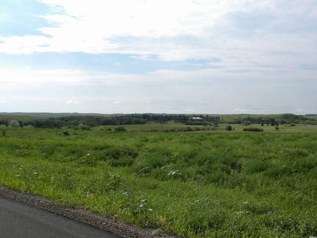 1159 Parker Ranch Road, Bismarck, ND 58503 (MLS #406360) :: Trademark Realty