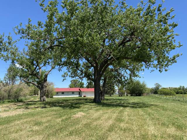 Address Not Published, Dickinson, ND 58601 (MLS #406368) :: Trademark Realty