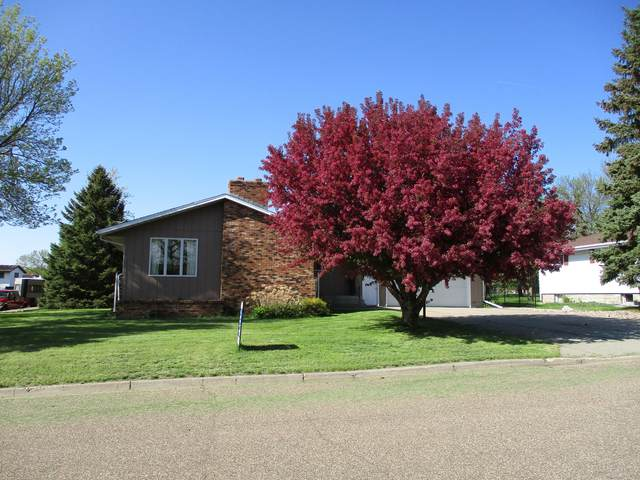 220 Coulee Drive, Washburn, ND 58577 (MLS #402593) :: Trademark Realty