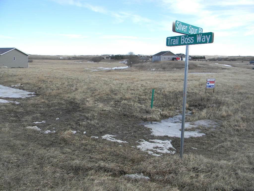 13819 Trail Boss Way - Photo 1
