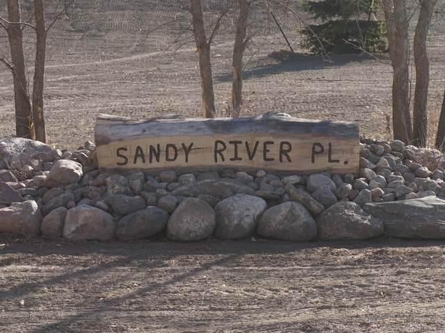 4118 Sandy River Place - Photo 1