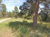 Lot 2 Chokecherry Ridge - Photo 1