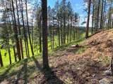 22483 Alpine Acres - Photo 21