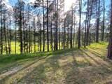 22483 Alpine Acres - Photo 23