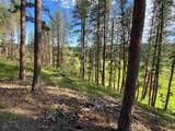 22483 Alpine Acres - Photo 24