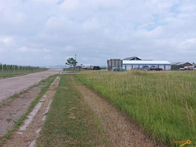 384 Cimarron Dr, Box Elder, SD 57719 (MLS #124782) :: Christians Team Real Estate, Inc.