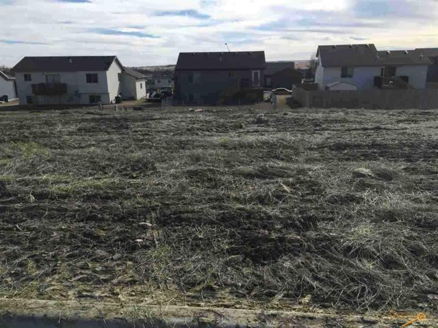 3201 Conservation Way, Rapid City, SD 57703 (MLS #127630) :: Christians Team Real Estate, Inc.