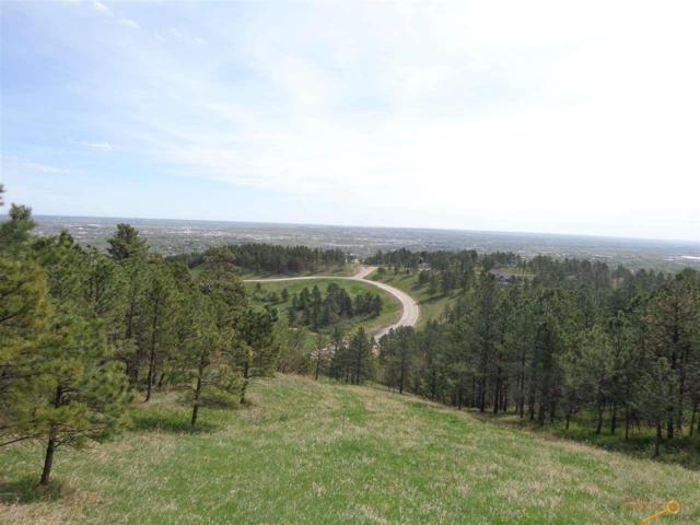 1515 Pevans Pkway, Rapid City, SD 57701 (MLS #128516) :: Christians Team Real Estate, Inc.