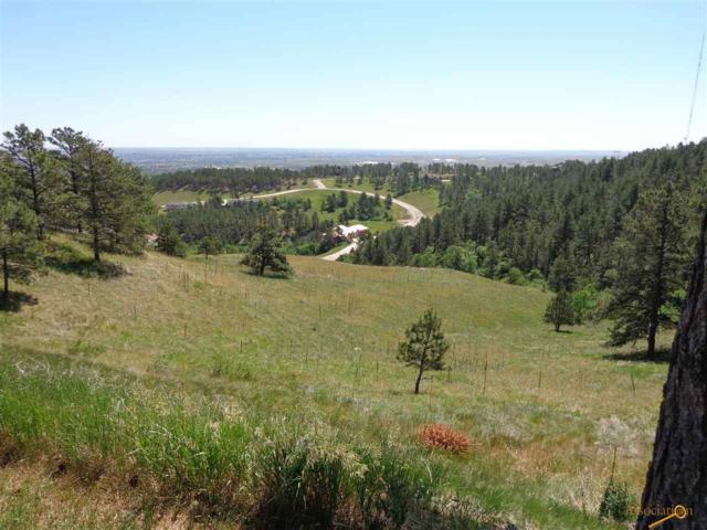 1623 Pevans Pkway, Rapid City, SD 57701 (MLS #129047) :: Christians Team Real Estate, Inc.