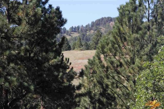TBD Frontier Loop, Whitewood, SD 57793 (MLS #135248) :: Christians Team Real Estate, Inc.