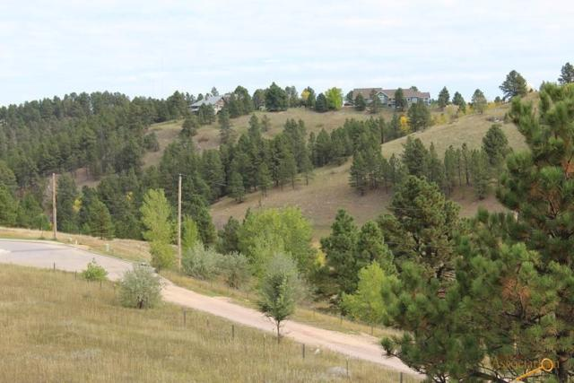 2310 Golden Eagle Dr, Rapid City, SD 57702 (MLS #136087) :: Dupont Real Estate Inc.