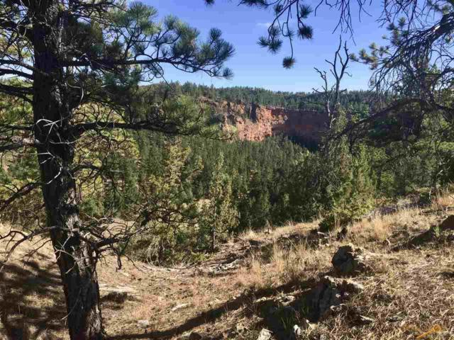 TBD Red Canyon, Custer, SD 57730 (MLS #136119) :: Christians Team Real Estate, Inc.