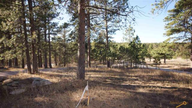 13767 Bears Loose Rd, Rapid City, SD 57702 (MLS #136843) :: Christians Team Real Estate, Inc.