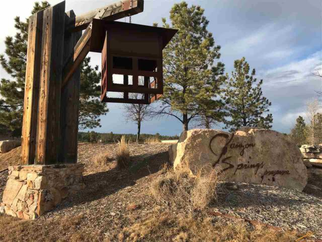 TBD Spotted Fawn Ln, Rapid City, SD 57702 (MLS #137057) :: Christians Team Real Estate, Inc.
