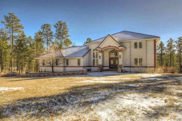 23612 Wilderness Canyon Rd, Rapid City, SD 57702 (MLS #137349) :: Christians Team Real Estate, Inc.